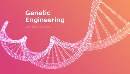 DNA sequence. Wireframe DNA molecules structure mesh. DNA code editable template. Science and Technology concept. Vector illustration. Wall mural