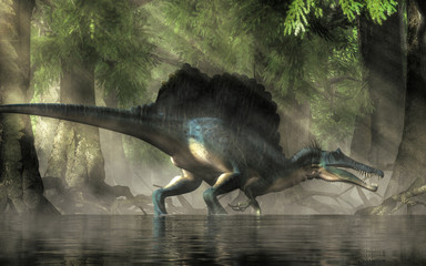 A spinosaurus in a swamp. Spinosaurus was semi-aquatic dinosaur from the Cretaceous period. It was one of the largest carnivorous dinos.  3D Rendering Wall mural