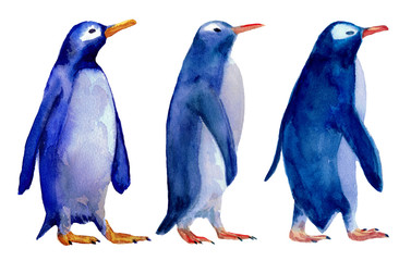 Watercolor hand drawn illustration of three wolking blue penguins isolated on white background. Design for kids background, packaging, wrapping papper. Winter theme.