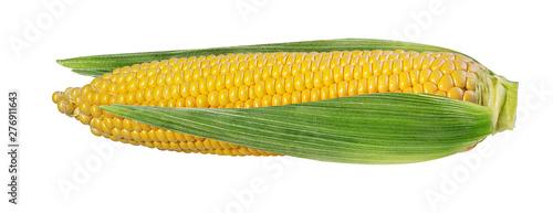 Fototapete Corn isolated on white background