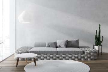 White living room interior with gray sofa