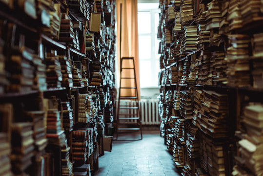 interior of library with books on wooden shelves and ledder