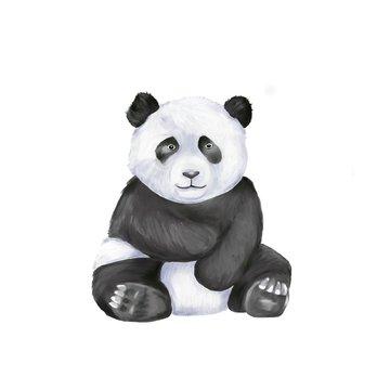 Big fat panda bear sits alone. Digital draw and paint, Isolate image.