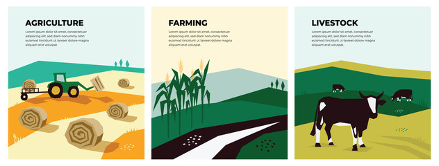 Set of vectors with agriculture, farming and livestock. Illustrations of a tractor, hayfield, haystack rolls, farm animals, cows in pasture, cornfield. Template for banner,poster,flyer, prints, books. Fototapete