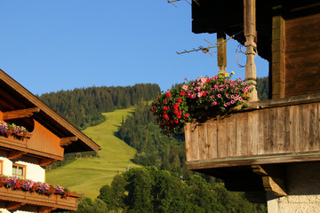 Holiday destination Wildschönau - Niederau, traditional wooden houses with flowers, and the ski slope in summer in the background, Tyrol - Austria
