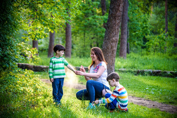 Young woman mother applying insect repellent to her two son before forest hike beautiful summer day...