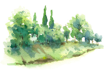 Watercolor Sketch Scene with Cypress Trees and Bushes on Hill