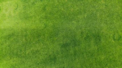 Spoed Foto op Canvas Gras Aerial. Green grass texture background. Top view from drone.