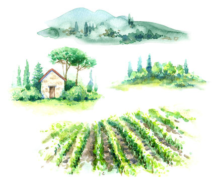 Watercolor Fragments of Rural Scene with Hills, Vineyard  and Trees