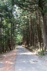 三峯神社の道中