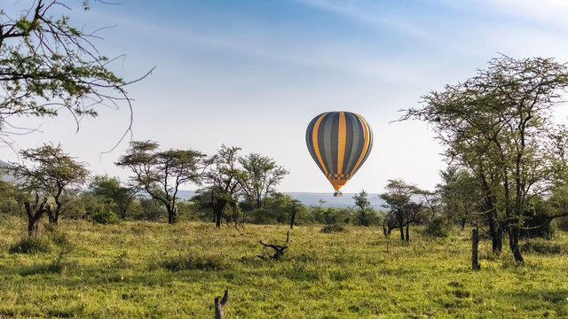 Air balloon above the savannah in the Serengeti reserve in Tanzania at  sunrise