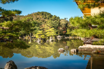 Beautiful small islands at the pond with back-lit pine trees at the Japanese Gardens surrounding the Golden Pavilion, Kyoto, Japan.