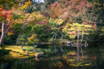 Serene Japanese Garden on a autumn morning with reflections in the pond's water at the Golden Pavilion in Kyoto, Japan.