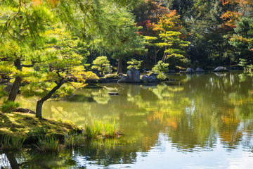 Charming corner of the Japanese Zen Gardens in autumn with reflections in the pond at the Golden Pavilion in Kyoto, Japan.