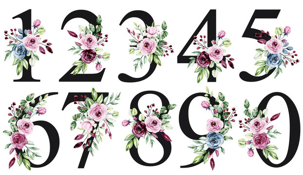 Numbers set with watercolor flowers roses and leaves. Perfectly for wedding invitations, greeting card, logo, poster and other floral design. Hand painting. Isolated on white background.