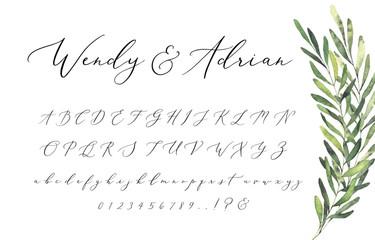 Wedding Invitation Script Font Alphabet