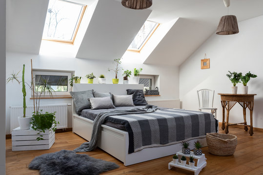 White bedroom with double bed, grey pillows and green plants in scandinavian style in the attic.