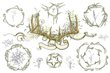 Vector illustration. Hand drawing on a graphic tablet.  Set of frames from deer horns. Antlers and herbs entwined ribbon.