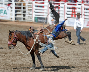 Wright of Milford, Utah bails off the horse Aloha Margie in the saddle bronc event during the Calgary Stampede rodeo in Calgary