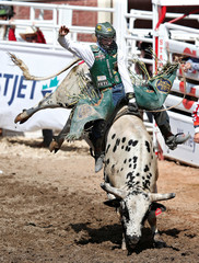 Lockwood of Volborg, Montana rides the bull Cold Water in the bull riding event during the Calgary Stampede rodeo in Calgary