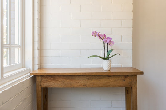 Purple phalaenopsis orchid in pot on wooden oak side table against white painted brick wall and window (selective focus)