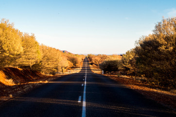 A long straight, hilly, road surrounded by trees in Australia (Alice Springs, Northern Territory)
