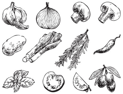 Hand drawn vector illustrations.Ingredients for cooking: olives, hot peppers, tomato, onion, garlic, champignon, ets. Perfect for menu, cards, blogs, banners. Illustration in sketch style