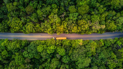 Forest Road, Aerial view over tropical tree forest with a road going through with car. Fototapete