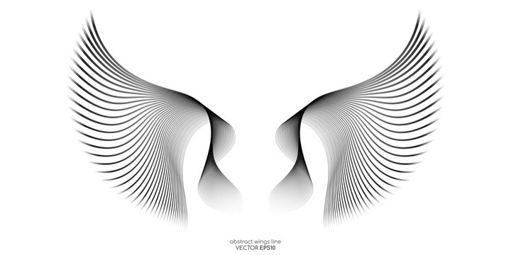 Abstract symmetry wings line isolated on white background. Vector illustration in concept of freedom.