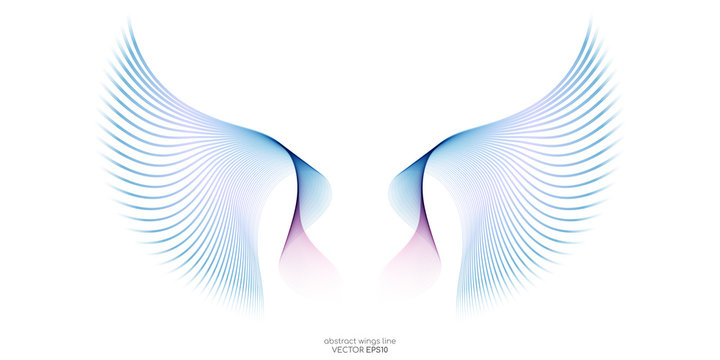Abstract symmetry bird wings line rainbow colorful isolated on white background. Vector illustration.