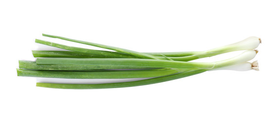 Fresh ripe green onions on white background Fototapete