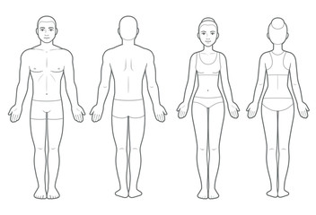 Male and female body chart