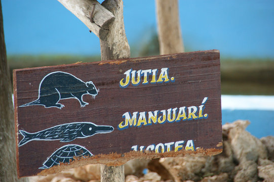 Zapata National Park. The Zapata Swamp is located on the Zapata Peninsula in the southern Matanzas Province of Cuba