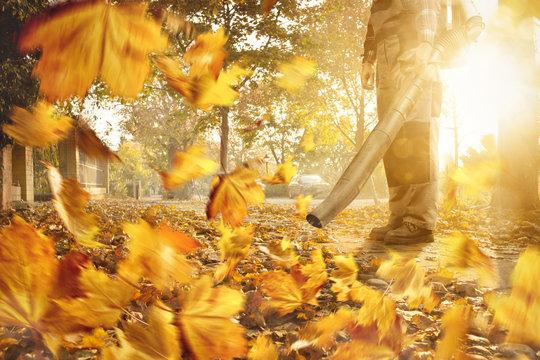 Mann mit Laubbläser entfernt Blätter vom Gehweg
