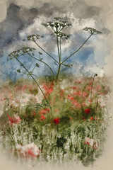 Obraz Digital watercolour painting of Beautiful poppy field landscape during sunset with dramatic sky - fototapety do salonu