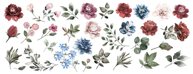 Flower set. Blue flowers,pink and Burgundy roses, twigs, leaves. For compositions of roses, floral frame with roses, watercolor invitation design,cards with flowers. Wedding.