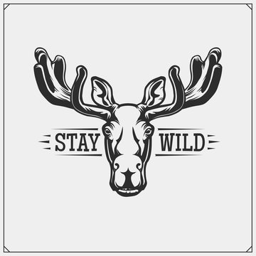 Vector emblem with moose or elk for sport club. Print design for t-shirt.