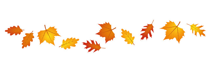 set of autumn leaves in the wind on white background vector illustration EPS10 Fotoväggar