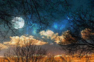 a night sky background with stars, moon and clouds through trees