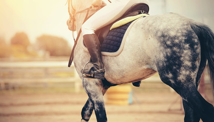The leg of the rider in the stirrup