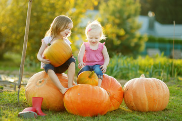 Two little sisters sitting on huge pumpkins on a pumpkin patch. Kids picking pumpkins at country farm on warm autumn day. Wall mural