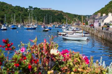 Pretty old Fishguard harbour, Wales UK Fototapete