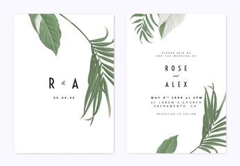 Fototapeta Minimalist botanical wedding invitation card template design, green bamboo palm leaves and Syngonium podophyllum albo-variegatum plant on white obraz
