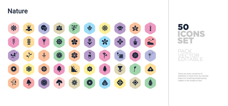 50 nature vector icons set in a colorful hexagon buttons