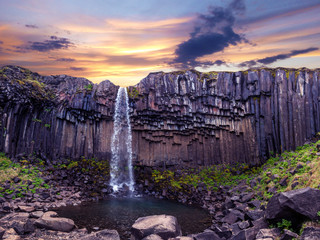 Türaufkleber Aubergine lila Magical landscape with a famous Svartifoss waterfall in the middle of basalt pillars in Skaftafell, Vatnajokull National Park, Iceland. Exotic countries. Amazing places. Popular tourist atraction.