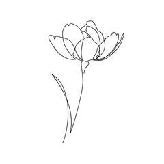 Abstract flower in one line art drawing style. Black line sketch on white background. Vector illustration