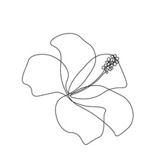 Hibiscus flower in one line art drawing style. Black line sketch on white background. Vector illustration