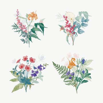Vintage wild flower bouquet illustration set. Isolated colored botanical herbs and flowers hand drawn graphic. Collection of botanical arrangement for wedding decor