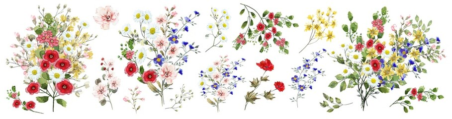 Field flowers.  Watercolor illustration. Botanical collection of wild and garden plants. Set: various wildflowers, pink, blue, yellow, leaves, bouquets, branches, herbs and other natural elements.