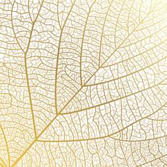 Background texture leaf. Vector illustration.